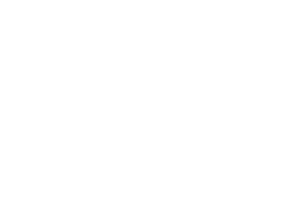 Delux Party Hire Main Logo White